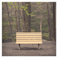 Streetlight Manifesto – The Hands That Thieve (2013, Victory Records)