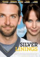 Silver Linings (USA 2012)