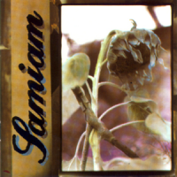 Samiam – Samiam (1990, New Red Archives)