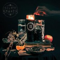 Silver Snakes – Year Of the Snakes (2014, Bridge Nine Records)
