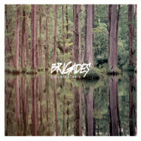 Brigades – Crocodile Tears (2014, Pure Noise Records)