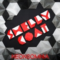 shellycoat-neonsomnia