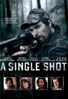 a-single-shot-e1456666453723.jpg