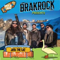 brakrock-2020-jaya-the-cat.png