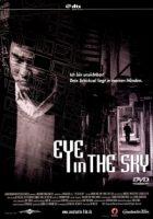 eye-in-the-sky-2008.jpg