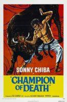 karatebullfighter.jpg