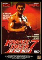 karatetiger7.jpg