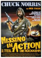 missing-in-action-2.jpg