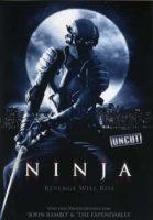 ninja-revenge-will-rise.jpg