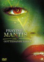 praying-mantis-die-gottesanbeterin.jpg