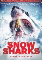 snow-sharks-2013-e1407447406925.jpg