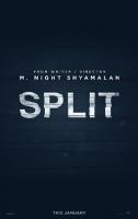 split-2017.png
