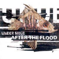 under-siege-after-the-flood.jpg